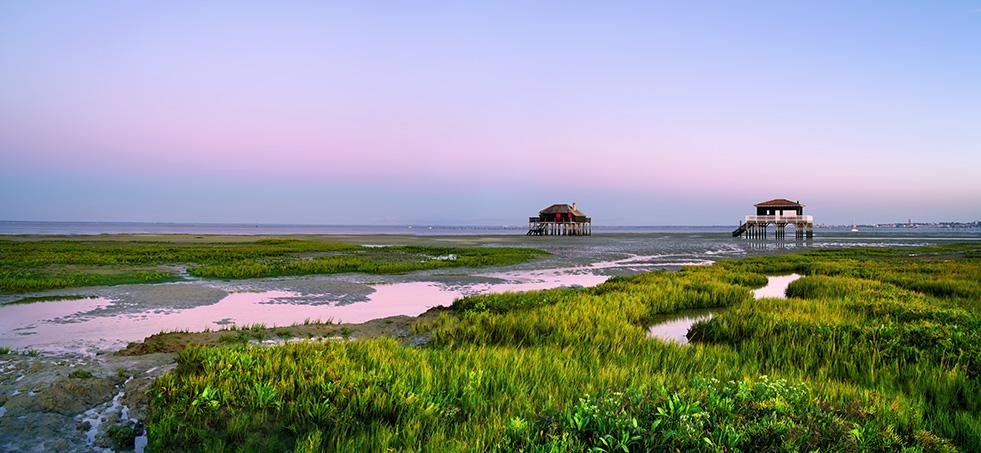 Les Cabanes tchanquées à marée basse sous un ciel de couleur parme juste après le coucher du soleil