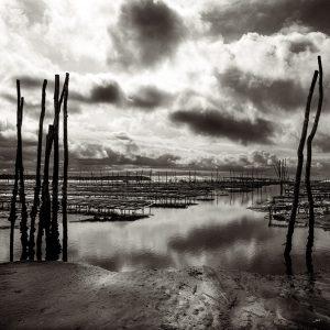 Parcs ostréicoles dans la conche du Mimbeau au Cap Ferret par le photographe du Bassin d'Arcachon Stéphane Scotto