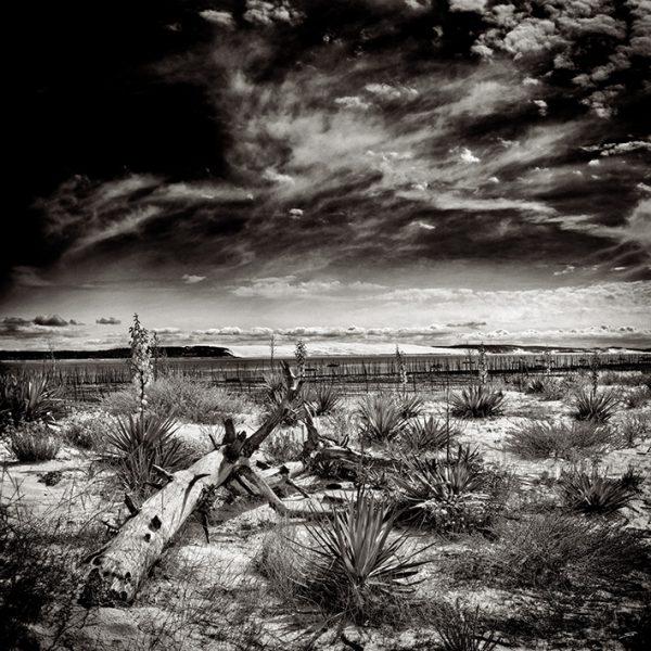 Photo noir et blanc de la conche du Mimbeau au Cpa Ferret par le photographe du Bassin d'Arcachon Stéphane Scotto