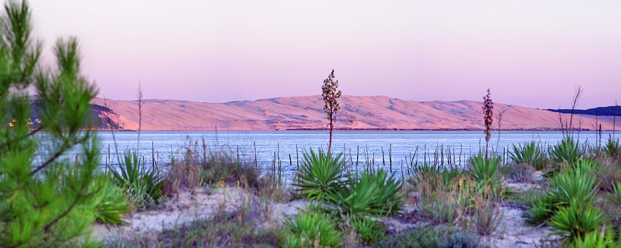 Dune du Pilat après le coucher du soleil bassin d'arcachon